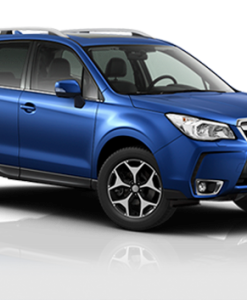 forester1